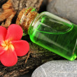 Bottle with basics oil on tree bark and stones close up - Stock Photo