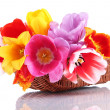 Beautiful tulips in bouquet isolated on white — Stock Photo #23887941