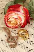 Treble clef, rose and wedding rings on musical background — Stock Photo