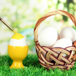 Easter eggs in basket on grass on bright background — ストック写真
