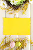 イースターエッグとミモザの花、白の木製の背景を持つ空のカード — ストック写真