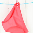 Womans panties hanging on a clothesline, on white wooden background — Stock Photo #23972651