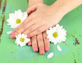 Woman hands with pink manicure and flowers, on color background — Stock Photo