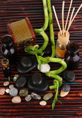 Spa composition with bamboo branches on wooden table close-up — Stock Photo