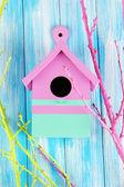 色枝、木製の背景の色と装飾的なネスト ボックス — ストック写真