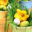 Easter eggs in bowls with grass on wooden table close up - Stockfoto