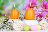 Paskalya mum parlak zemin üzerine çiçekli — Stok fotoğraf