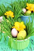 Paskalya yumurtaları kase çim yeşil ahşap masa ile yakın çekim — Stok fotoğraf