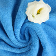 Stock Photo: Towel texture close up
