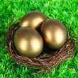 Three golden eggs in nest on grass — Stock Photo