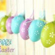 Art Easter background with eggs hanging on fence — Stock Photo #24085203