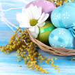 Easter eggs in basket and mimosa flowers, on blue wooden background — Stock Photo #24085307