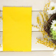 Empty card with easter eggs and mimosa flowers, on white wooden background — Stock Photo