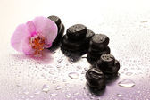 Spa stones and orchid flower, on wet backgroun — Stock Photo