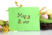 Card with easter eggs and mimosa flowers, isolated on white — Stock Photo