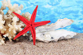Open oyster with pearl on sand on water background — Stock Photo