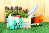 Ferramentas de jardim na grama no quintal — Fotografia Stock