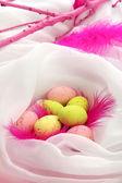 Beaux œufs de pâques et de plumes d'ornement transformées, gros plan — Photo