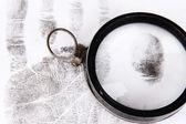 Fingerprints close-up isolated on white — Stock Photo