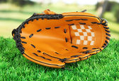 Baseball glove on grass in park — Stock Photo