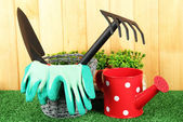 Garden tools on grass in yard — Стоковое фото