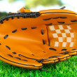 Baseball glove on grass in park — Foto Stock