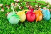 Colorful eastern eggs on grass background — Photo