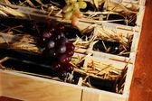 Ozdobne pudełko z butelek wina z bliska — Zdjęcie stockowe