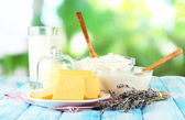 Glass of milk and cheese on natural background — Stock Photo