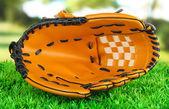бейсбольная перчатка на траве в парке — Стоковое фото