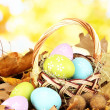 Royalty-Free Stock Photo: Easter eggs in wicker basket hidden in leaves