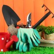 Garden tools on grass in yard — Stock Photo #24280551
