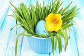 Huevo de pascua en un tazón con la hierba en la tabla de madera azul cerrar — Foto de Stock