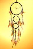 Krásný sen chytá na žlutém podkladu — Stock fotografie
