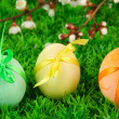 Colorful eastern eggs on grass background — Stock Photo
