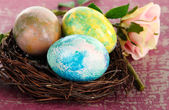 Easter eggs in nest on pink background — Photo