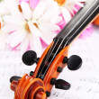 Classical violin  with flowers on notes - Стоковая фотография