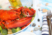 Red lobster on platter on serving table close-up — Stockfoto