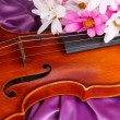 Classical violin on fabric background — Stock Photo #24478477