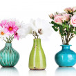 Beautiful flowers in vases isolated on white — Stock Photo #24490119