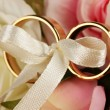 Wedding rings tied with ribbon on rose background — 图库照片