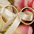 Wedding rings tied with ribbon on rose background — Stockfoto