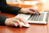 Female hands working on laptop, on bright background — Stock Photo