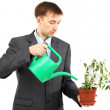 Young businessman watering pot — Stock Photo