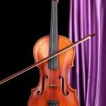 Classical violin — Stock Photo #24543263