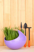 Green grass in decorative pot on wooden background — Photo