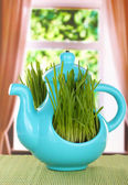 Green grass in decorative pot on window background — Photo