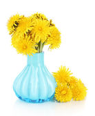 Dandelion flowers in vase isolated on white — Stock Photo