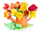 Easter composition with fresh tulips and easter eggs isolated on white — Photo