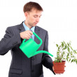 Young businessman watering pot isolated on white — Stock Photo #24632139